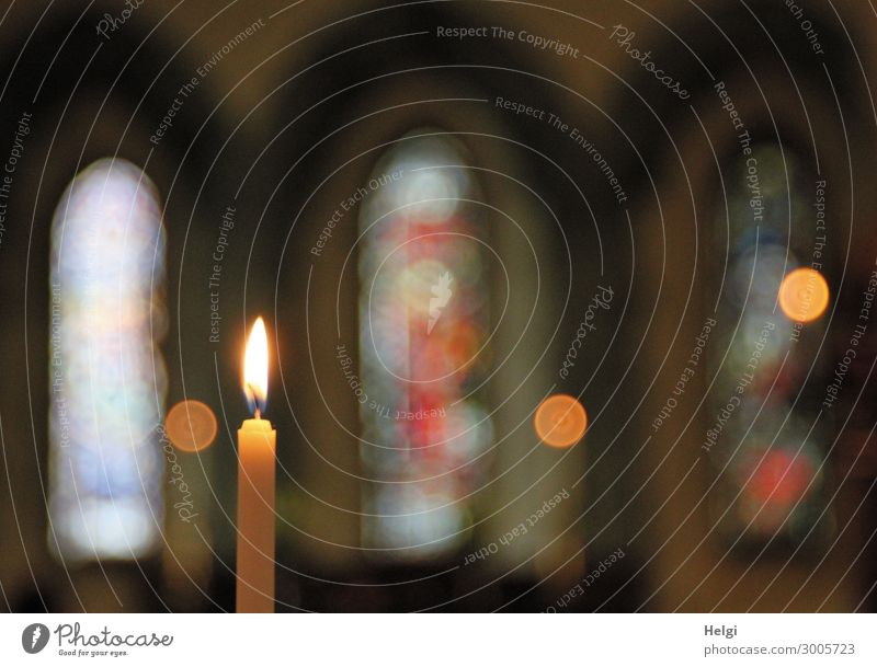 Close-up of a burning candle with church windows as Bokeh Church Wall (barrier) Wall (building) Window Church window shoulder stand Sign Glittering Illuminate