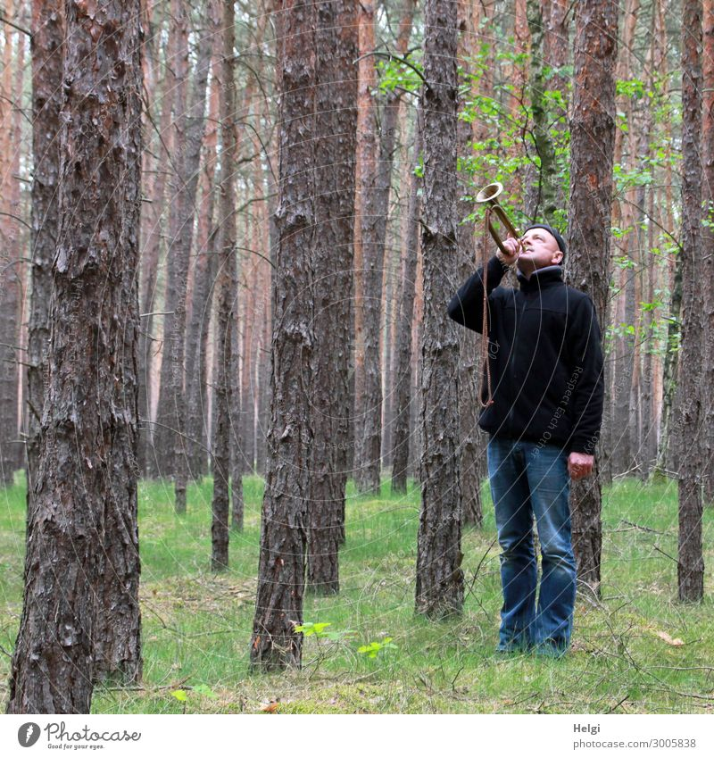 a man in jeans and a black jacket is standing in a spruce forest blowing a trumpet Human being Masculine Man Adults 1 45 - 60 years Environment Nature Landscape
