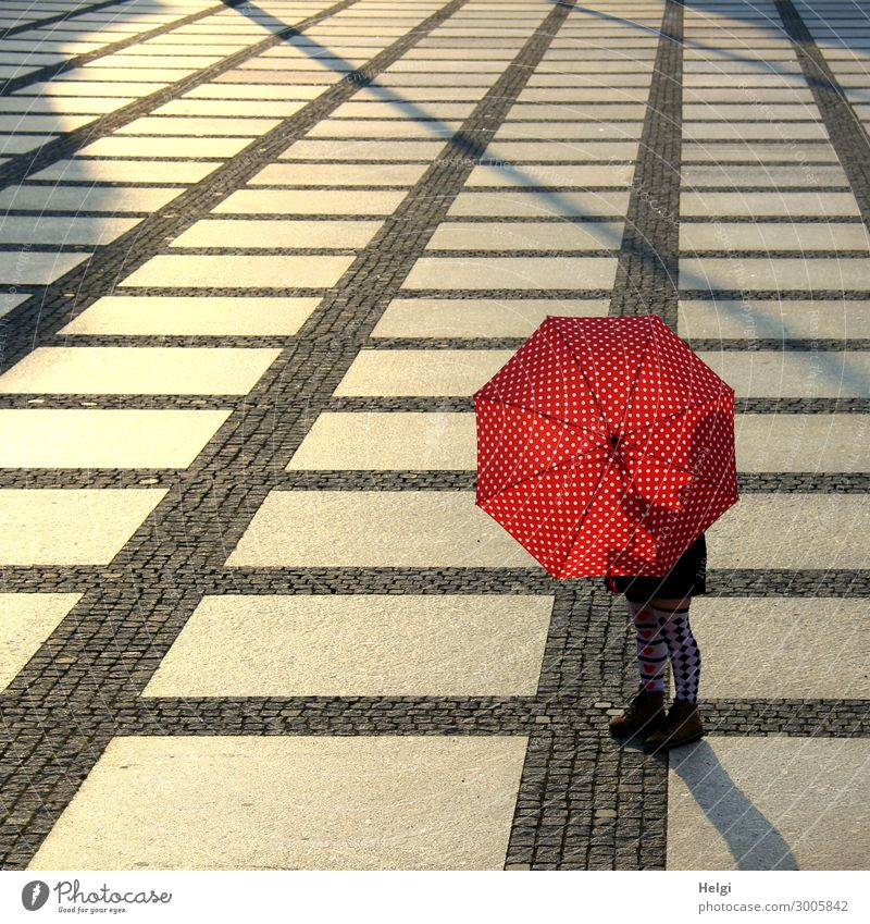 Female person stands with a red and white dotted umbrella and patterned stockings on a large paved square in the back light Human being Feminine Woman Adults