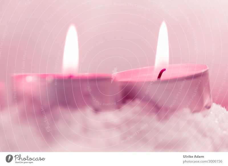 Christmas & Advent Relaxation Calm Religion and faith Pink Design Contentment Decoration Illuminate Birthday To enjoy Energy Break Wellness Well-being Belief