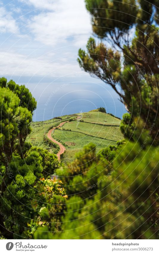 Green hilly landscape and sea on the island of Soa Jorge, Azores Vacation & Travel Tourism Trip Adventure Far-off places Freedom Expedition Environment Nature