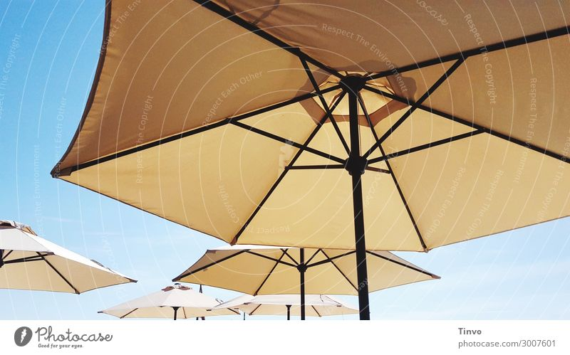 sunshades Cloudless sky Sunlight Summer Climate Climate change Beautiful weather Protection Vacation & Travel Sunshade Weather protection UV protection Warmth