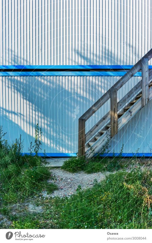 Blue Green White Architecture Facade Office Stairs Construction site Build Tin Weed Meadow flower Fallow land Temporary Construction supervisor