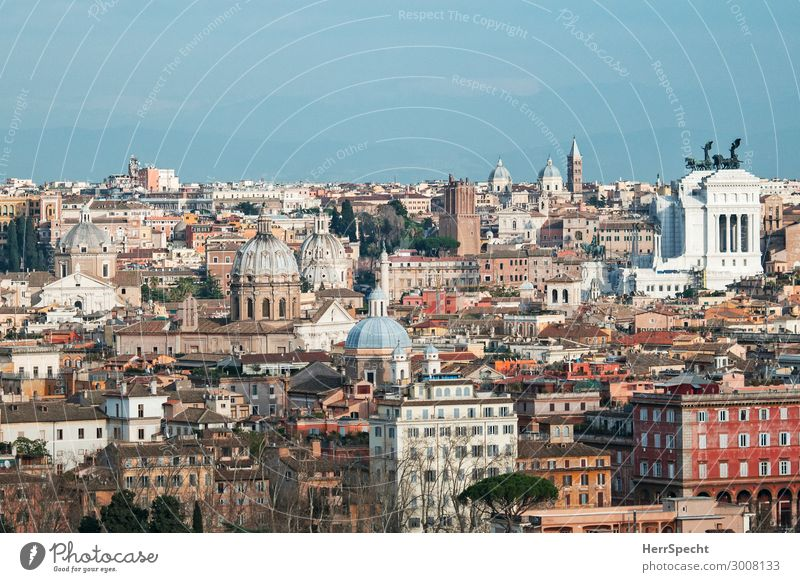 la cittá eterna - bella vista / View from one of the 7 hills Vacation & Travel Tourism Trip Sightseeing City trip Rome Capital city Old town Skyline Church Dome