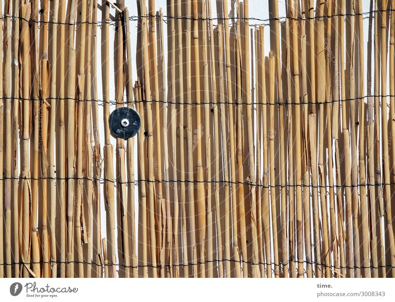 Town Yellow Wall (building) Time Wall (barrier) Brown Design Line Arrangement Transience Change Discover Protection Safety To hold on Stripe
