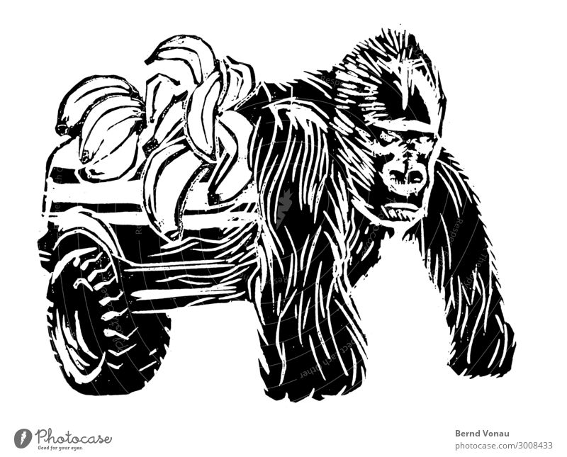 monkeybusiness Vehicle Car Animal 1 Looking Logistics Pick-up truck Banana Monkeys Gorilla Woodcut Collage Power Hybrid transformer silverback Fruit delivery