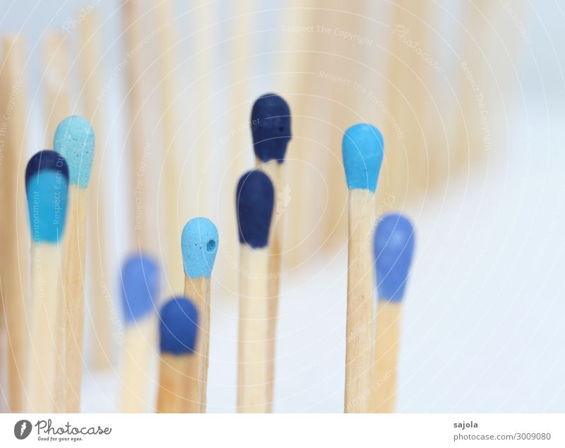 blue company Human being Androgynous Crowd of people Match Wood Stand Together Blue Safety Protection Friendship Team Fence Equal Blue tone Blue gradation