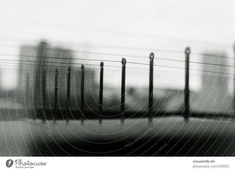 Berlin fences Fence Safety Pigeon Gray Captured Town Wire Surveillance Blur Electricity Obscure Black & white photo pigeon protection Fear Penitentiary Rope