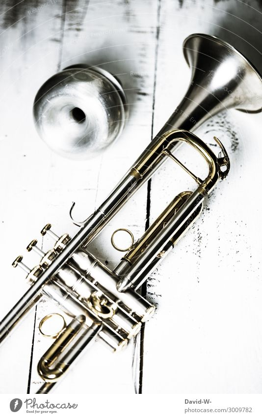 Trumpet with damper Lifestyle Elegant Style Design Leisure and hobbies Playing Education School Study Success Art Artist Work of art Culture Music