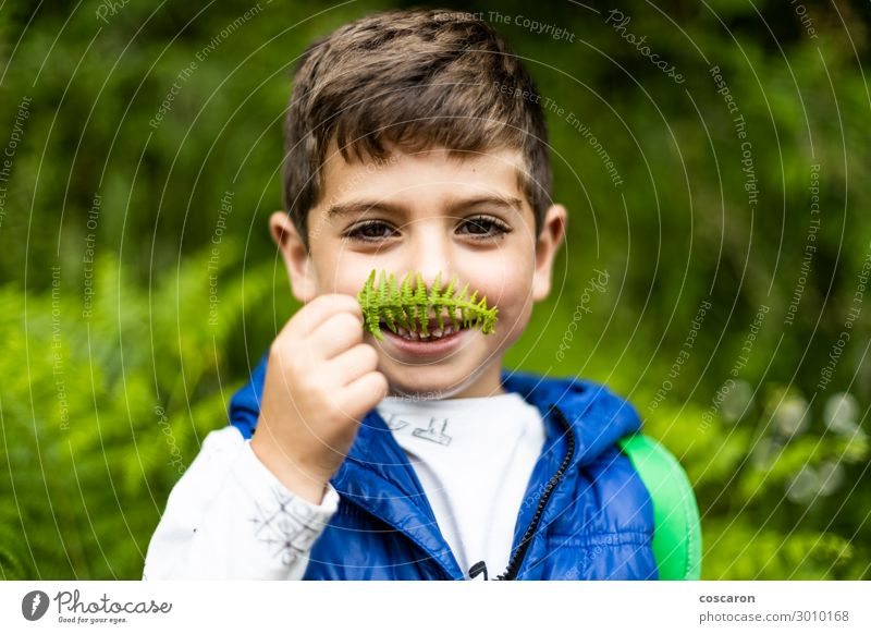 Little boy playing with ferns in the woods Lifestyle Joy Happy Beautiful Leisure and hobbies Vacation & Travel Tourism Adventure Summer Mountain Hiking Sports
