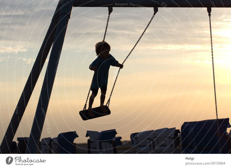 Silhouette of a little boy rocking standing in the evening sun against the light Playing To swing Vacation & Travel Summer Summer vacation Beach Human being