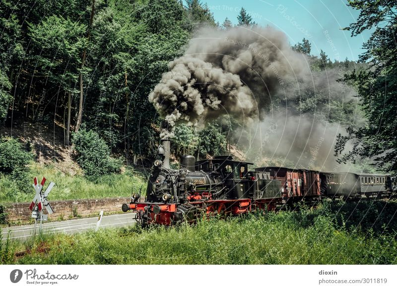 I hear the train a comin' Technology Nature Landscape Sky Cloudless sky Summer Tree Grass Forest Mountain Palatinate forest Transport Means of transport