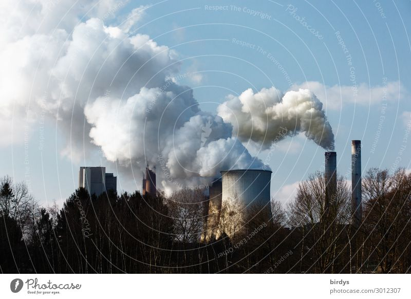 Cause of climate change l man-made. Lignite-fired power plant in NRW Energy industry Coal power station Sky co2 CO2 emission Climate change Tree Germany Chimney