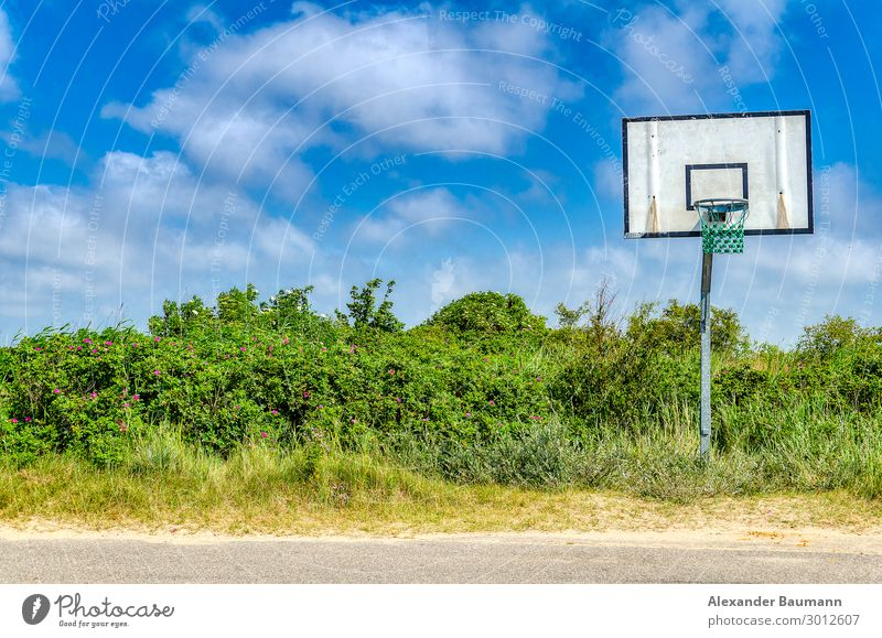 Basketball basket in landscape Sports Ball sports Sky Clouds Bushes Deserted Street Fitness Longing Loneliness Uniqueness Leisure and hobbies Colour photo