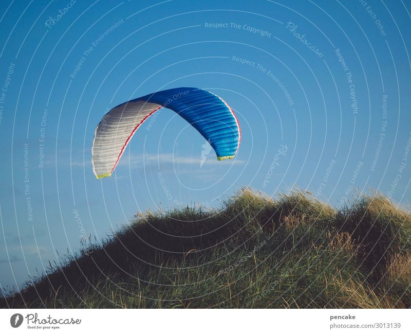 Airy with umbrella, charm and... Sports Nature Landscape Beautiful weather Grass Coast North Sea Flying Free Maritime Paraglider Paragliding Dune Marram grass