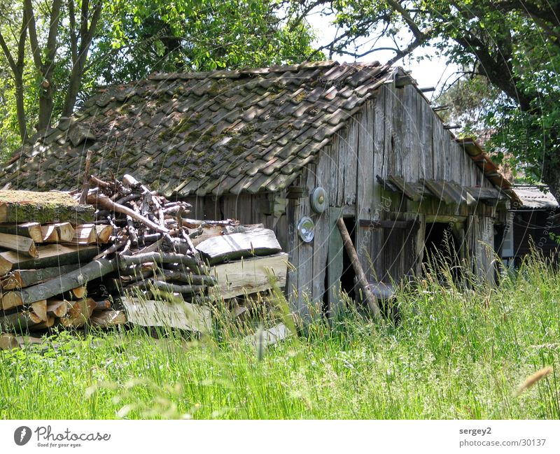 Tree Green Grass Wood Brown Agriculture Hut