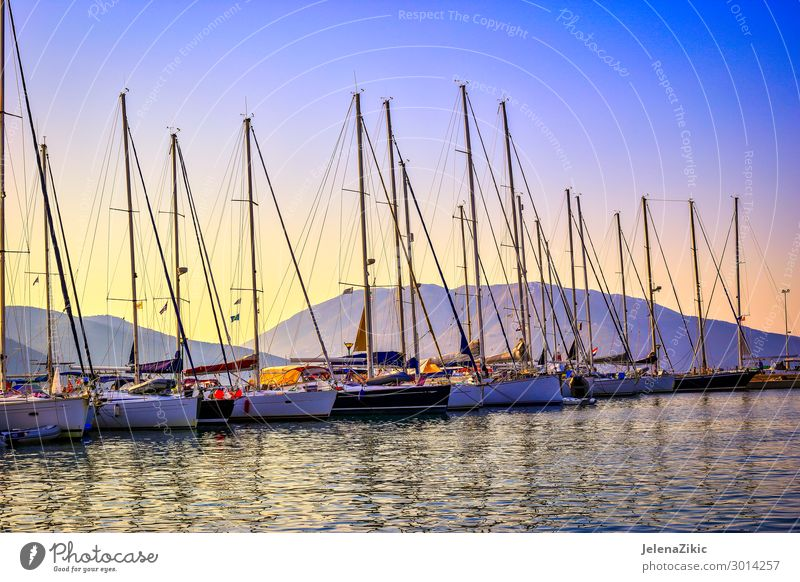 Sailboats in the port at sunset Beautiful Relaxation Leisure and hobbies Vacation & Travel Tourism Trip Adventure Cruise Summer Summer vacation Ocean Island