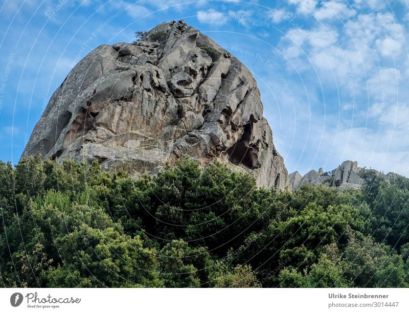 stone giants Environment Nature Landscape Plant Sky Clouds Spring Beautiful weather Bushes Rock Italy Sardinia Exceptional Large Natural Power Vacation & Travel