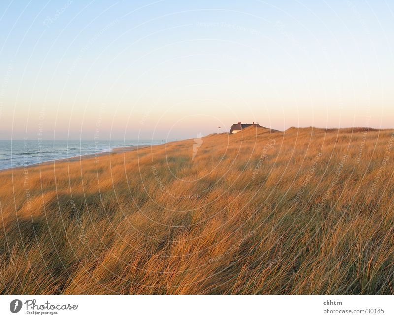 House in the dunes Sylt Dusk November Ocean Loneliness Beach dune North Sea Far-off places