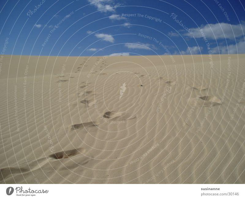 Sky Summer Beach Vacation & Travel Clouds Sand Europe Tracks Beach dune Fuerteventura Canaries