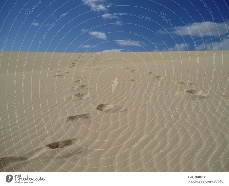Traces in the sand Vacation & Travel Fuerteventura Summer Beach Clouds Europe Sand Tracks Beach dune Sky