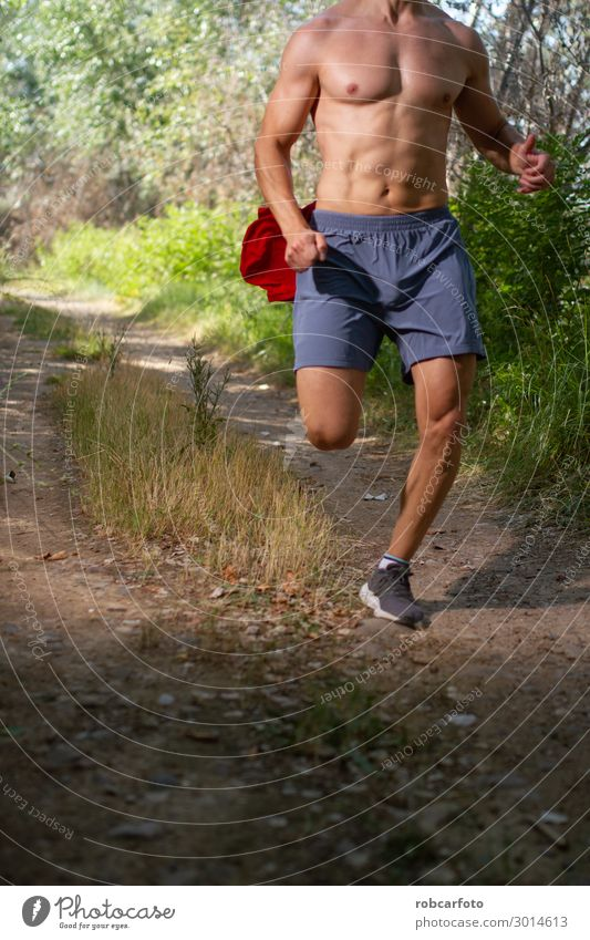 runner running shirtless through the field Lifestyle Body Summer Sports Jogging Human being Man Adults Nature Sky Lanes & trails Fitness Hot Muscular fit young