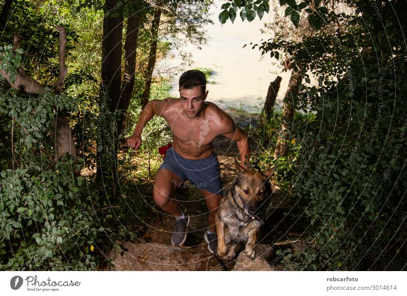 runner running across the field with his dog Joy Happy Leisure and hobbies Summer Sports Jogging Man Adults Nature Landscape Animal Sky Grass Pet Dog Fitness