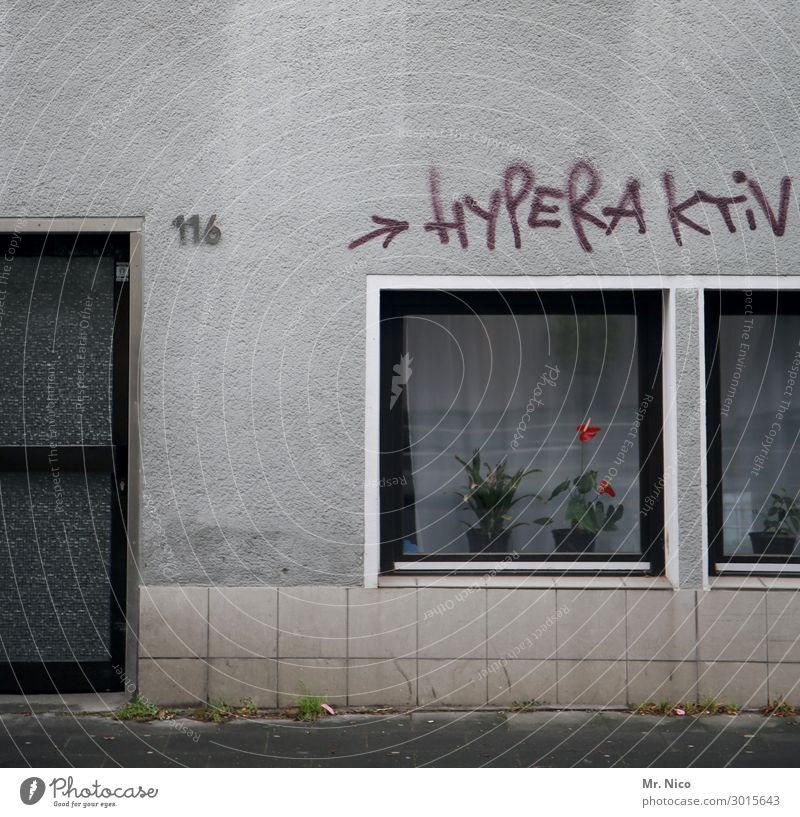 HYPERACTIVE Town House (Residential Structure) Building Architecture Wall (barrier) Wall (building) Window Door Gray Graffiti Digits and numbers Flower vase