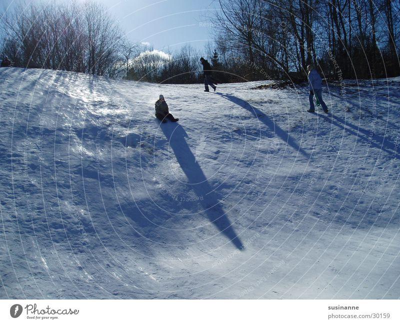 Cold Snow Ice Hill Downward Sweden Sleigh Sledding Motala Toboggan run Sledge