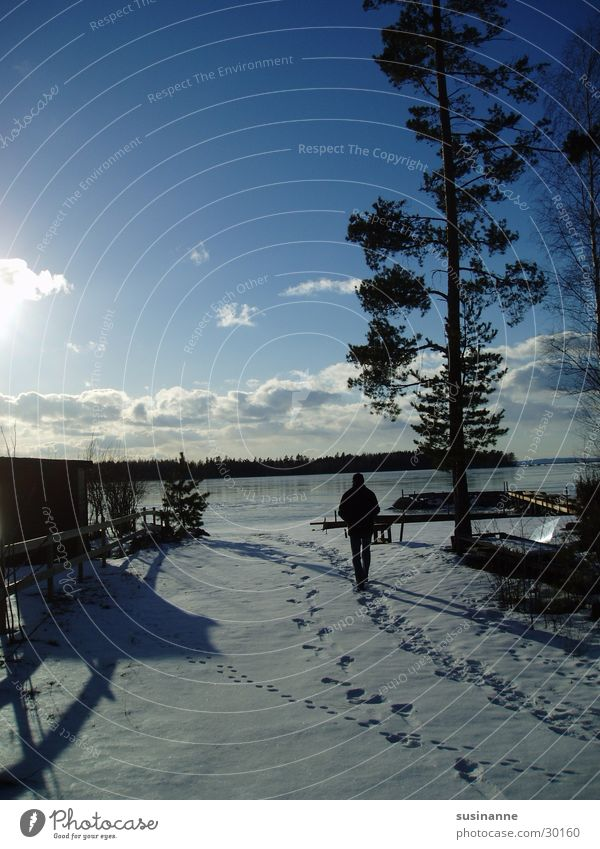 Winter Snow Lake Tracks Sweden Pine Vättern lake Motala