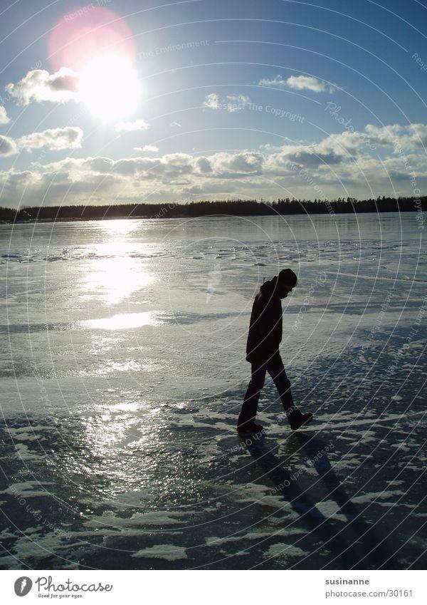 on leaf 2 Vättern lake Motala Lake Frozen Winter Sweden Ice