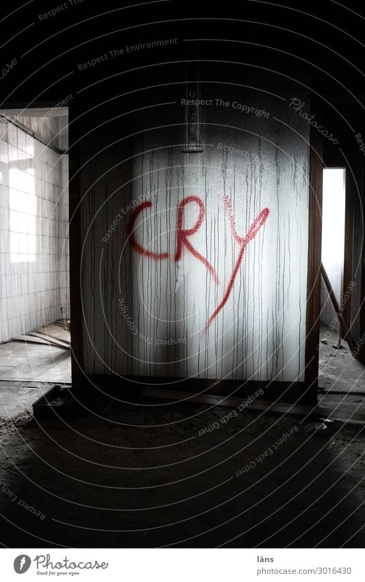 cry House (Residential Structure) Loneliness Uninhabited Dark Bright Fear Eerie