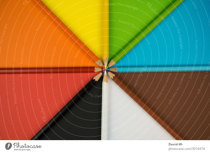 Blue Colour Beautiful Green White Red Black Background picture Yellow Art Copy Space School Orange Brown Arrangement Study