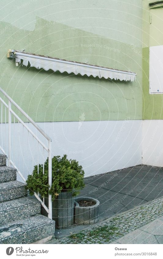 Plant Green White House (Residential Structure) Architecture Building Gray Stairs Bushes Corner Concrete Manmade structures Banister Sun blind Flap