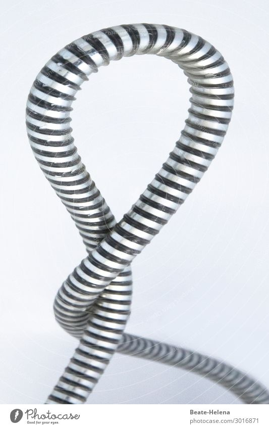 tangled affair - shower hose twisted around itself results in a loop Complicated Rotated Snake noose shower hose loop Shower hose Metal Water involved matter