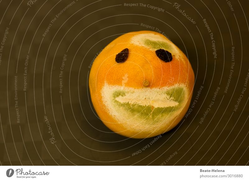 Vacation & Travel Nature Old Green Healthy Food Face Exceptional Orange Together Brown Fruit Nutrition Dream Smiling