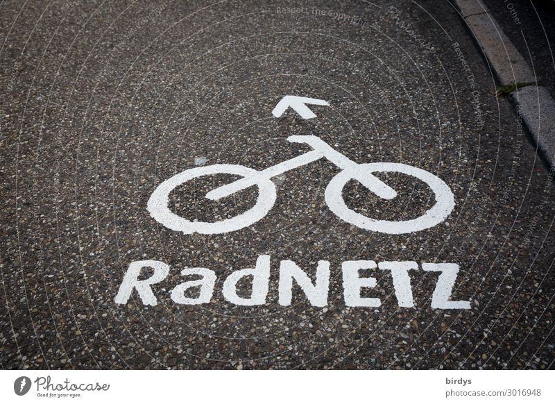 cycle paths Cycling Transport Traffic infrastructure Street Road sign Cycle path Bicycle Sign Characters Arrow Authentic Sustainability Positive Gray White