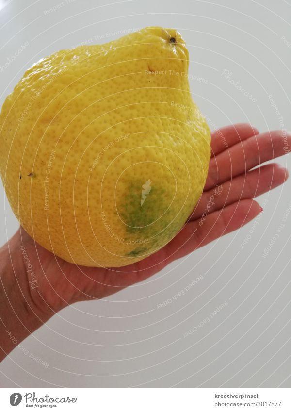 lemon Fruit Lemon Hand Fingers Sour Yellow Day Fruity Fruit sugar Lemon yellow citric acid Lemon peel sour makes fun lemon yellow fruit Biological fruit photo