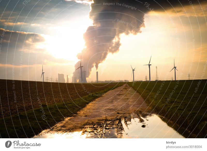 Energy and climate change Energy industry Renewable energy Wind energy plant Coal power station Sky Clouds Sunrise Sunset Climate Climate change Field