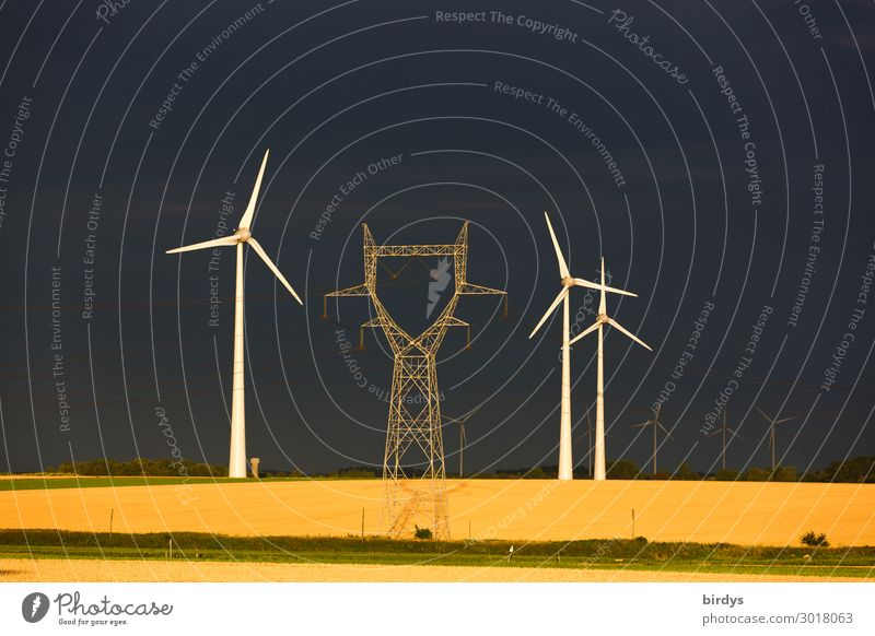 Summer White Black Yellow Exceptional Gray Field Energy industry Success Authentic Future Climate Grain Wind energy plant Society