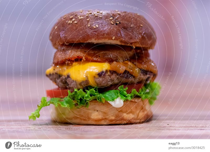 View of a beef burger with cheddar cheese and bacon Food Meat Cheese Bread Roll Eating Lunch Dinner Diet Fast food Restaurant Delicious Juicy Red Frying