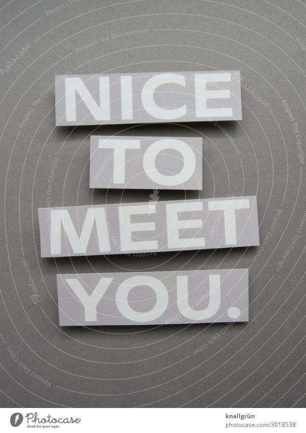 Nice to meet you. Joy Emotions Sincere politeness empty phrase Welcome Friendliness Human being Happiness communication Moody nice Communicate 2 Communication