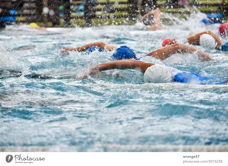 Triathlon- Swimming Sports Fitness Sports Training Sportsperson Sporting event Swimming & Bathing Sporting Complex Swimming pool Human being Masculine Man