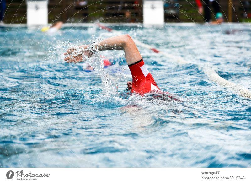 Triathlon - Swimmer Sports Fitness Sports Training Sportsperson Swimming & Bathing Sporting Complex Swimming pool Human being Masculine Man Adults 1