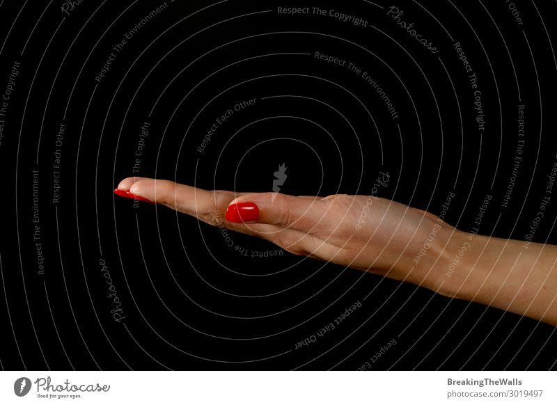 Woman hand palm presenting something over black Human being Feminine Young woman Youth (Young adults) Adults Hand Fingers 1 Red Black White Present Hold Gesture