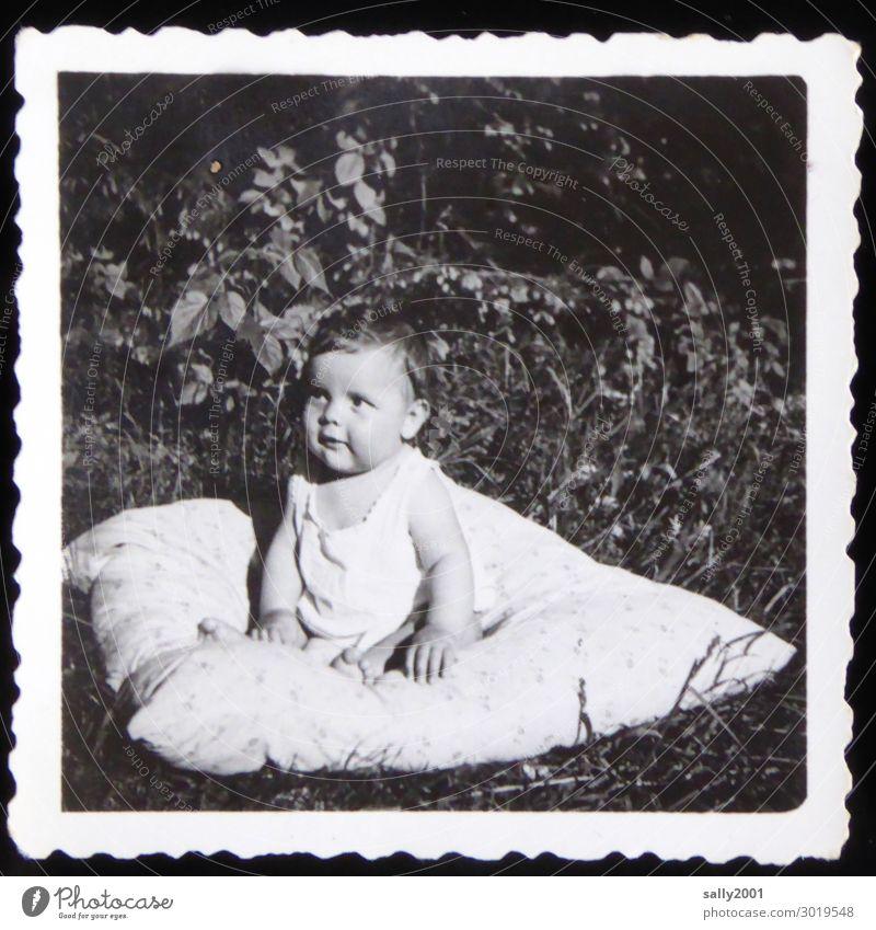 Human being Summer Relaxation Grass Boy (child) Think Masculine Free Sit Beginning Baby Photography Cute Observe Friendliness Curiosity