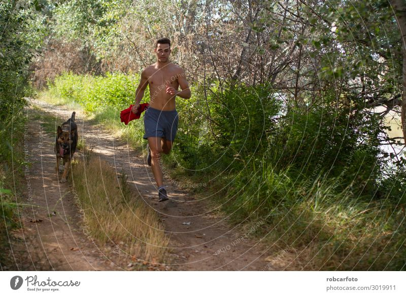 running across Joy Happy Leisure and hobbies Summer Sports Jogging Man Adults Nature Landscape Animal Sky Grass Pet Dog Fitness Athletic Together Green