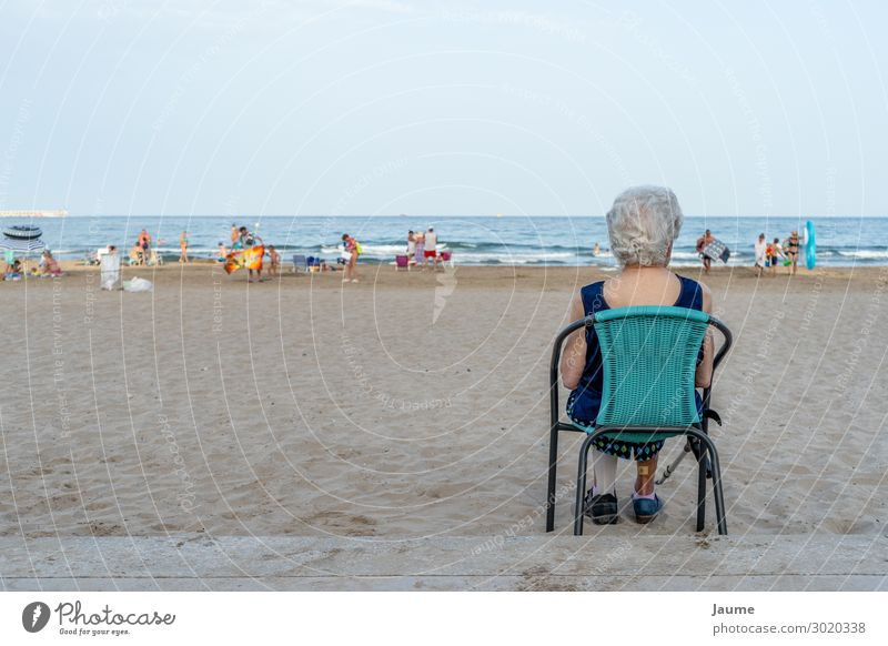 Senior lady sitting on a chair on the beach, looking at the sea Human being Feminine Female senior Woman Grandmother Senior citizen 1 60 years and older Summer