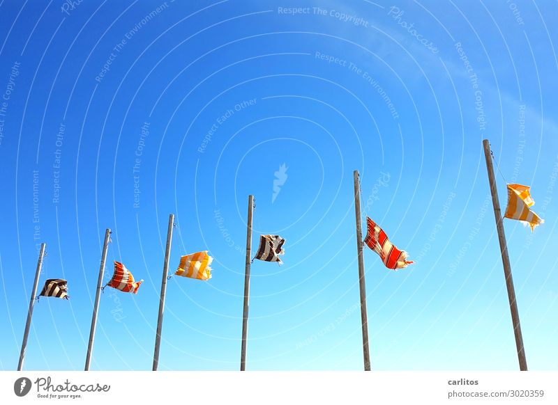 Flags in the wind I Lanzarote Canaries Wind Flagpole Sky Blue Gale Tourism Vacation & Travel Travel photography