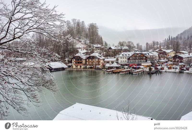 Schoenau at Koenigssee Winter Mountain Water Forest Hill Alps Coast Lake Town Harbour Watercraft Cold beautifully close to the lake Koenigssee